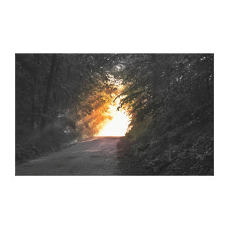 Black and White Sunlit Path Gallery Wrapped Canvas