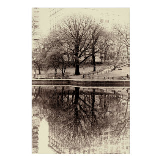 Black and White Tree Landscape Photo Poster