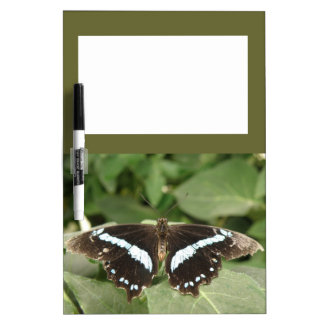Black and White Tropical Butterfly Memo Board