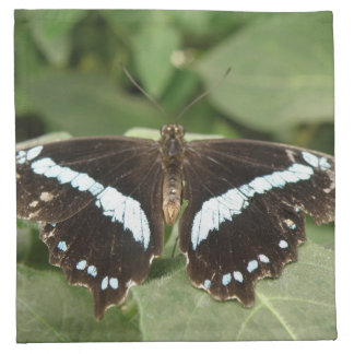 Black and White Tropical Butterfly Napkin