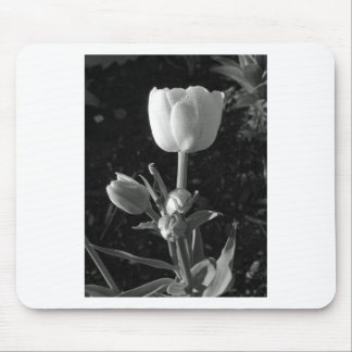 Black and White Tulip Mousepads