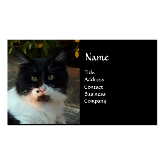 BLACK AND WHITE TURKISH CAT PIERO BUSINESS CARD TEMPLATE