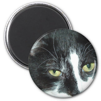 Black and White Tuxedo Cat 6 Cm Round Magnet