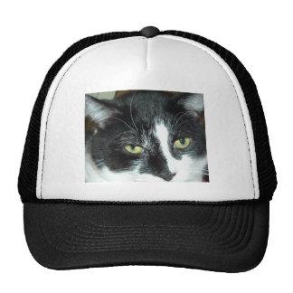Black and White Tuxedo Cat Mesh Hat