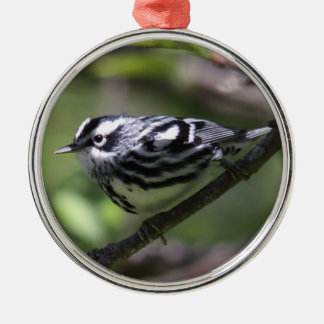 Black-and-White Warbler Christmas Ornament