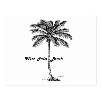 Black and white West Palm Beach & Palm design Postcard