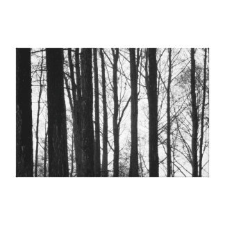 Black and white winter stretched canvas print