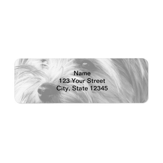 Black and White Yorkshire Terrier Return Address Return Address Label
