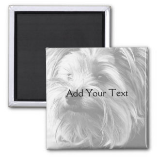 Black and White Yorkshire Terrier Yorkie Magnet
