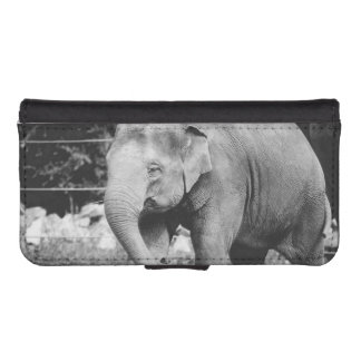 Black and White Young Elepgant Photograph iPhone 5 Wallets