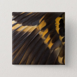 Black And Yellow Feather Abstract 15 Cm Square Badge