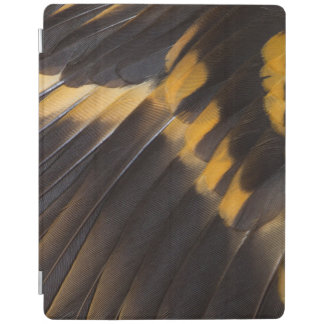Black And Yellow Feather Abstract iPad Cover