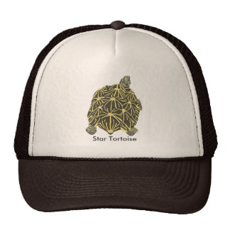 Black and Yellow Star Tortoise Painting Hats
