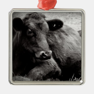 Black Angus Beef Cow Silver-Colored Square Decoration