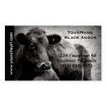Black Angus Cattle Photo for  Beef Ranch or Farm Pack Of Standard Business Cards