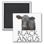 Black Angus Cow Refrigerator Magnet