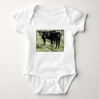 Black Angus Heifer Calves T Shirts