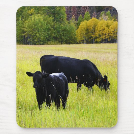 Black Angus Pair in Field Mouse Mat
