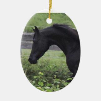 Black Arabian Stallion Ceramic Oval Decoration
