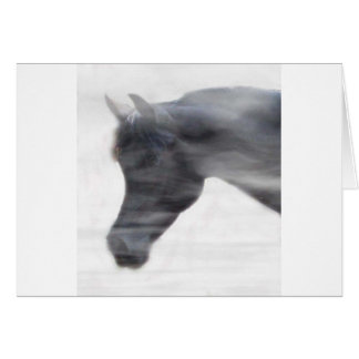 Black Arabian Stallion in the Fog Card