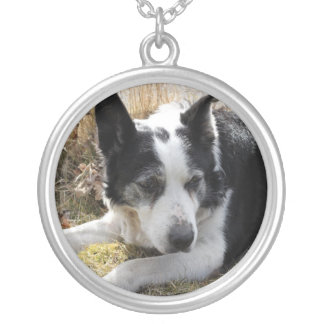 Black Australian Cattle Dog Necklace