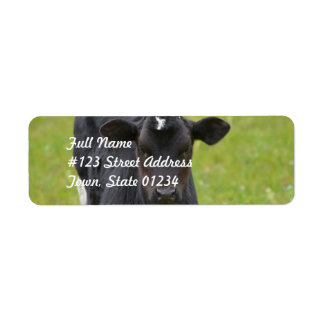 Black Baby Calf Return Address Label