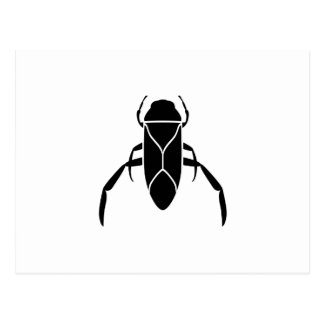 Black Back Swimmer Insect Graphic Print Postcards