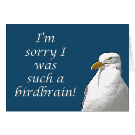 Black-Backed Gull I'm Sorry Card