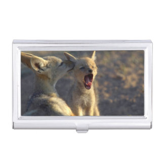Black-Backed Jackal (Canis Mesomelas) Pups Business Card Holder