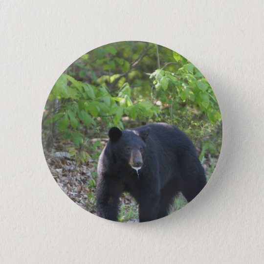 black bear 6 cm round badge