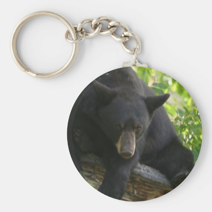 black bear basic round button key ring