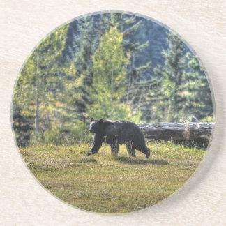 Black Bear Crossing A Ranch Pasture Beverage Coasters