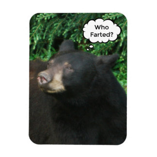"""Black Bear - """"Cubby Who Farted?"""" 3"""" X 4"""" Magnet"""