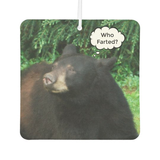 "Black Bear - ""Cubby Who Farted?"" Car Air"