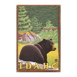 Black Bear in Forest - Idaho Canvas Print