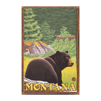 Black Bear in Forest - Montana Gallery Wrapped Canvas