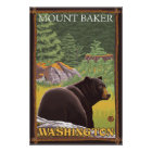 Black Bear in Forest - Mount Baker, Washington Poster