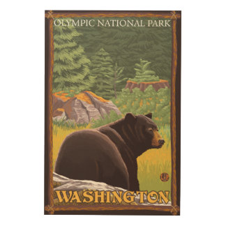 Black Bear in Forest - Olympic Nat'l Park, WA Wood Wall Art