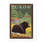Black Bear in Forest - Yukon, Alaska Postcards