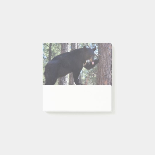 Black Bear Post it Notes