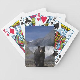 Black Bear & Rocky Mountains Waterfall Wildlife Poker Cards