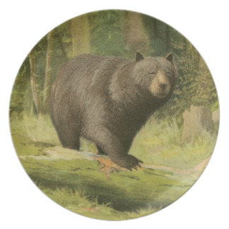 Black Bear Stepping on a Tree Trunk Party Plate