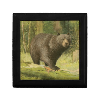 Black Bear Stepping on a Tree Trunk Small Square Gift Box