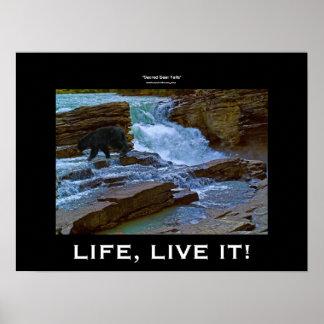 Black Bear & Waterfall Wildlife Motivational Print
