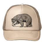 Black Bears Cap