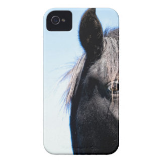 Black Beauty Case-Mate iPhone 4 Cases