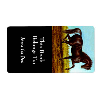 Black Beauty Horse Bookplates Bookplate Labels