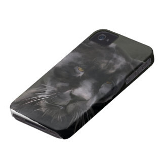 Black Beauty iPhone 4 case