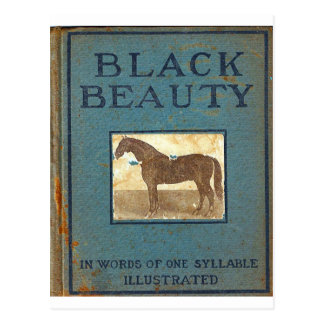 Black Beauty Postcard