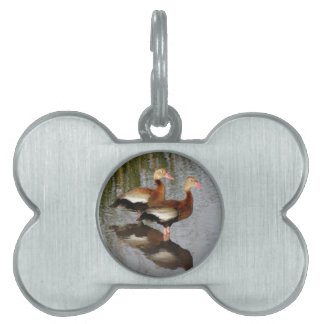 Black-bellied Whistling Duck Pet Tags